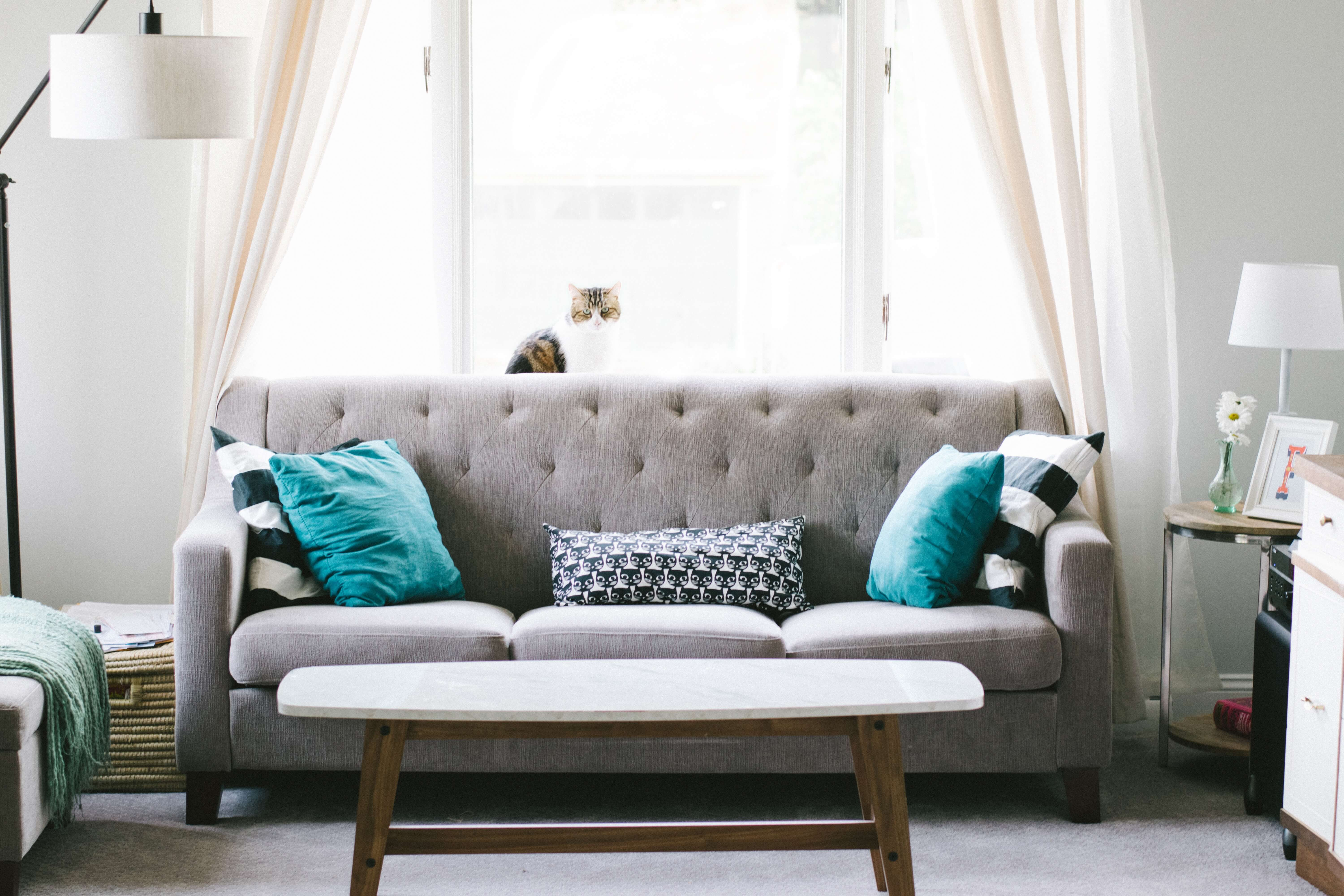 6 Helpful Home Cleaning Tips | Chem-Dry of Santa Clarita Valley