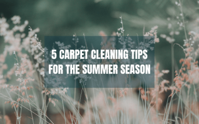 5 Carpet Cleaning Tips For The Summer Season