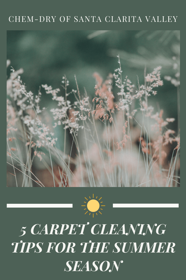 carpet cleaning in valencia for the summer season